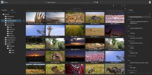 Sony Media Backbone NavigatorX
